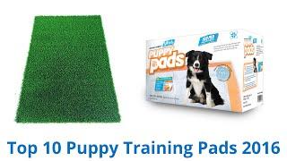 10 Best Puppy Training Pads 2016