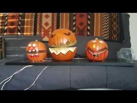 Animatronic singing pumpkins sing This is Halloween