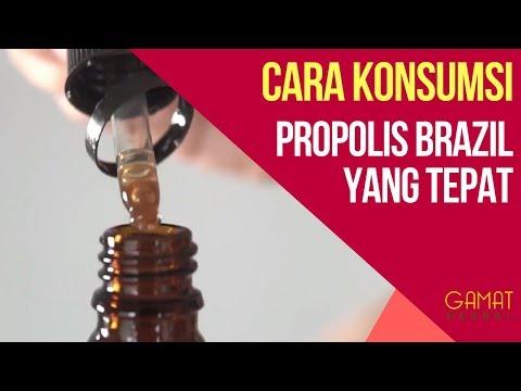 Cara Konsumsi Herbal Propolis Brazil Dengan Tepat