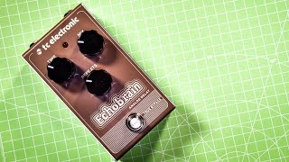 TC Electronic ECHOBRAIN (Analog Delay) - in depth review