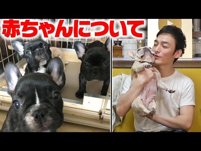 【ご報告】クルミちゃんが赤ちゃんを出産しました! - ユーチューバー 草彅チャンネル