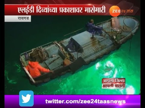 Raigad   Traditional Fisherman In Problem From New Led Fishing