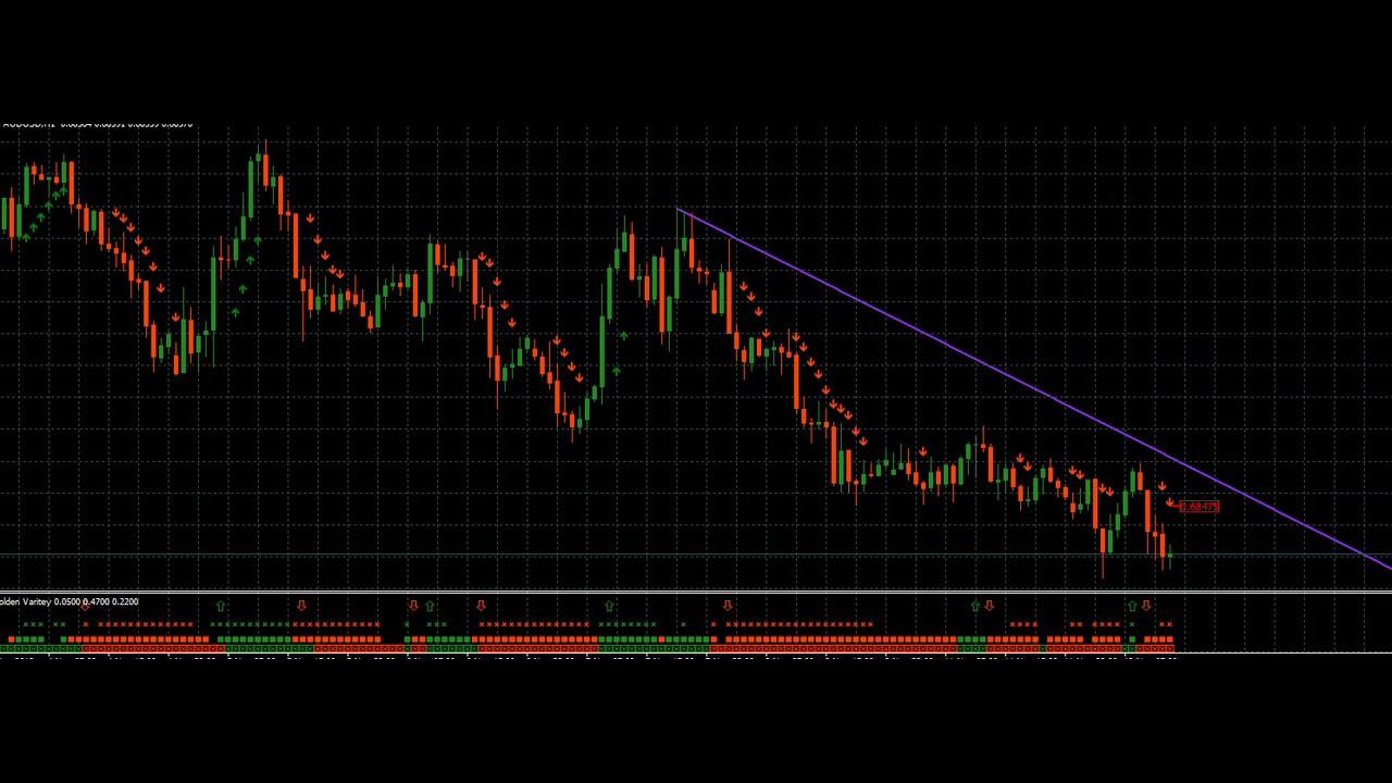 software trading automatico gratis