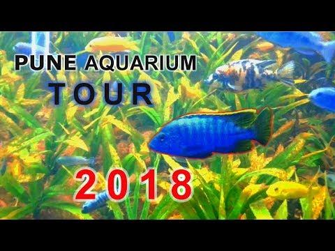 TOUR TO PUNE AQUARIUM   2018