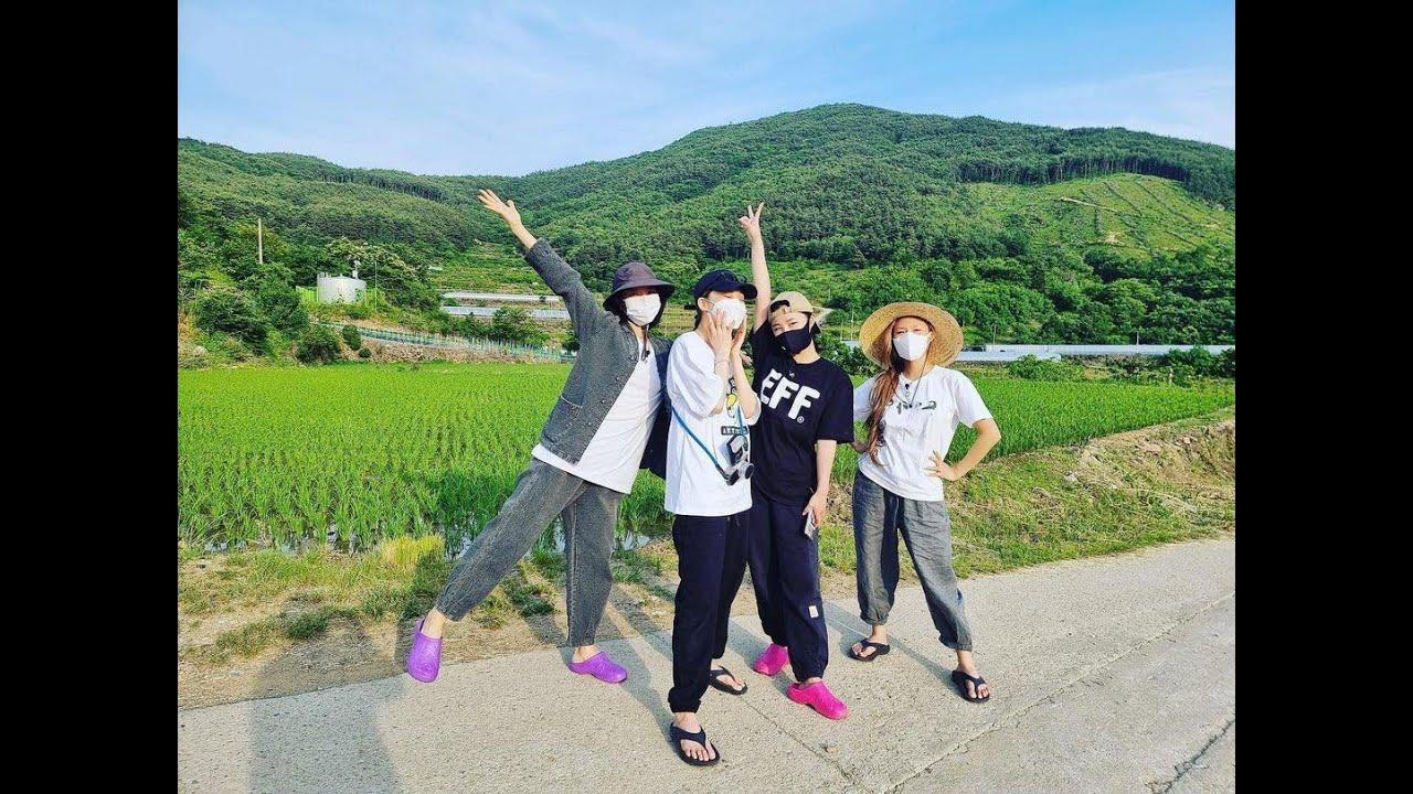 Download MAMAMOO MoonSun Moments | [Special] '맘무세끼' EP1