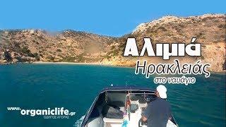Εν πλω στην παραλία Αλιμιά Ηρακλειάς, στο ναυάγιο του γερμανικού αεροπλάνου / www.organiclife.gr