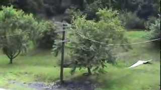 2006 Summer LittCarr Kentucky Knott County