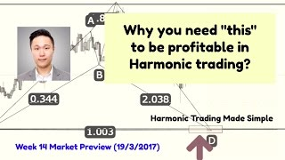 """Why you need """"THIS"""" to be profitable in Harmonic Trading"""