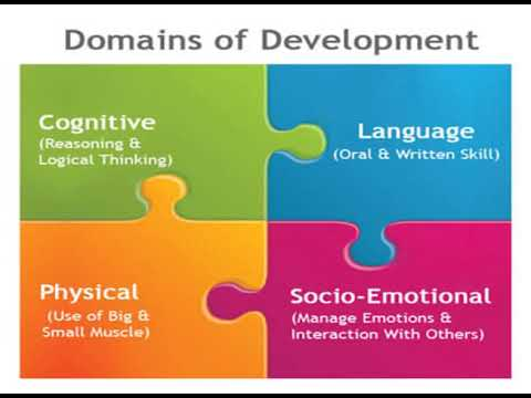 Domains in Human Development