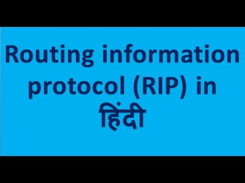 rip protocol in hindi | rip in hindi | rip in networking in hindi