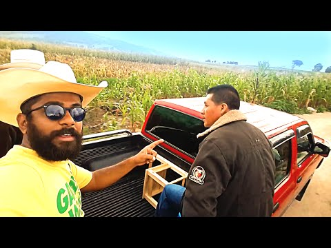 learning spanish with mexican farmers // Indian in Mexico 16 - Samsung Galaxy Note 4