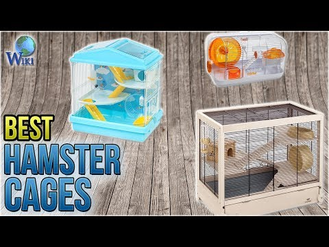 10 Best Hamster Cages 2018