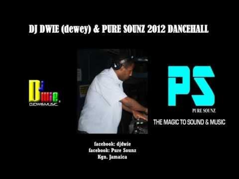 DJ DWIE (dewey) & PURE SOUNZ  2012 DANCEHALL MIX.wmv