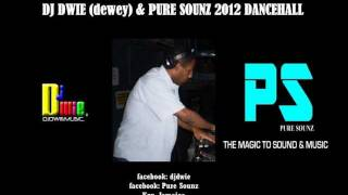 DJ DWIE (dewey) & PURE SOUNZ  2012 DANCEHALL MIX.wmv