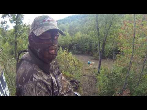 Northwest Arkansas Bear Hunt 2013