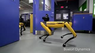 Geno Wylin Beats - The Future of Pets ( robot dynamic robot boston dynamics ) mobile manipulation