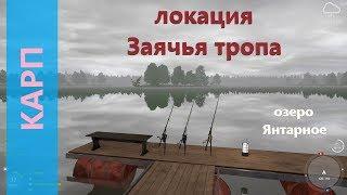 Русская рыбалка 4 озеро Янтарное Карп с деревянных мостков