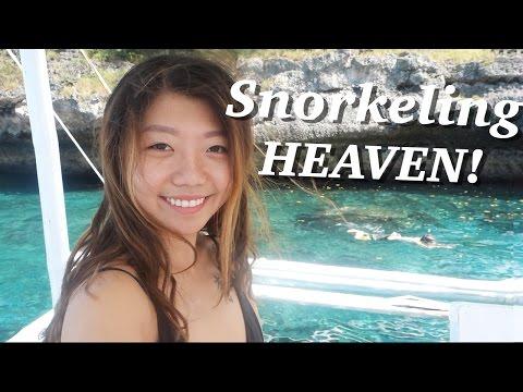 MOALBOAL ISLAND HOPPING! Snorkeling Cebu, Philippines