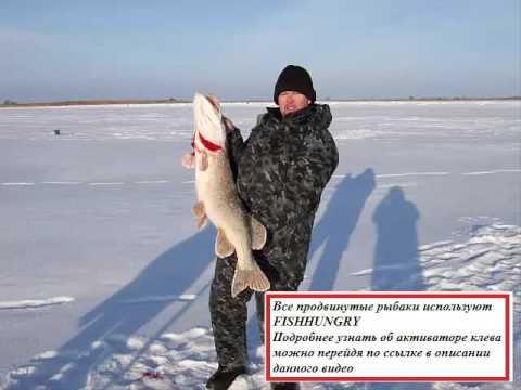 Зимний активатор клева рыбы