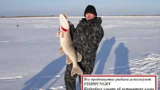видео Аттрактант для рыбалки своими руками: описание, особенности и отзывы. Аттрактант для зимней рыбалки