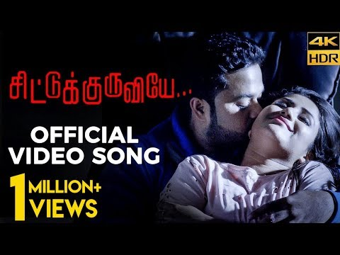 Alya Manasa & Sanjeev's HOT Romantic Video Song | Chittu Kuruviye Musical Video thumbnail