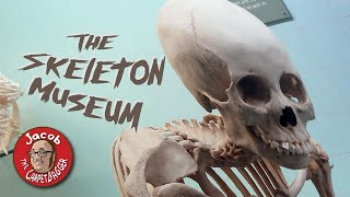 World's Only Skeleton Museum - The Museum of Osteology