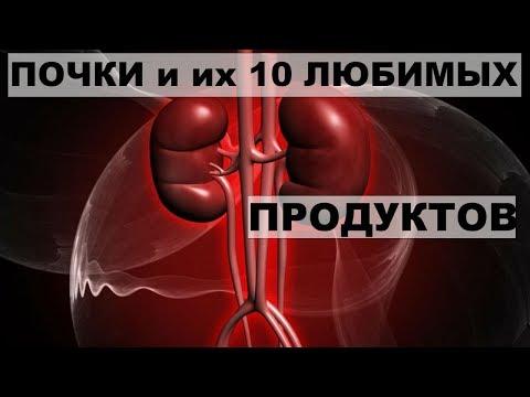 ПОЧКИ и ИХ ДЕСЯТЬ ЛЮБИМЫХ ПРОДУКТОВ. 5 правил,которые сохранят здоровье почек