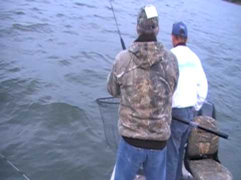 Live Bait Fishing in the Susquehanna River Can Yield Monster