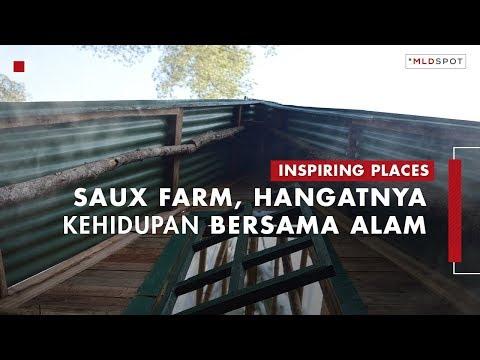 SAUX FARM: Pengalaman Berkabin 360 Derajat   Inspiring Places #34 Part 2
