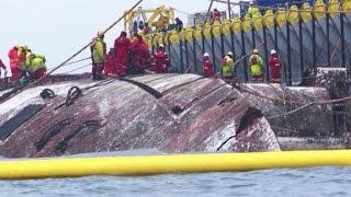 Raising the dead from S  Korea ferry disaster