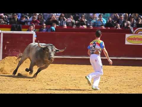 Recortes Fallas 2015 Adolfo Marín Medetauro