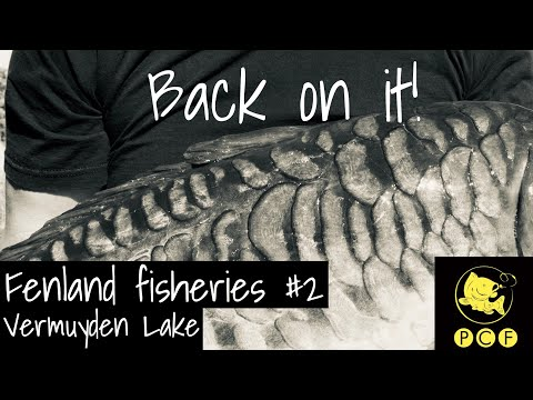 Fenland Fisheries #2 - Back On It!
