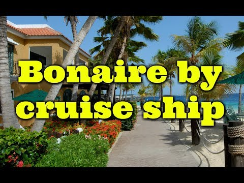 Cruising to Bonaire and a Carnival Vista Review - we find out  about the island