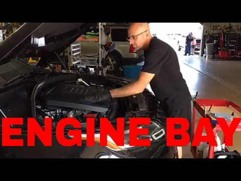 Engine Compartment ! Clean, Condition, And Protect! What I Use And How It Is Used!