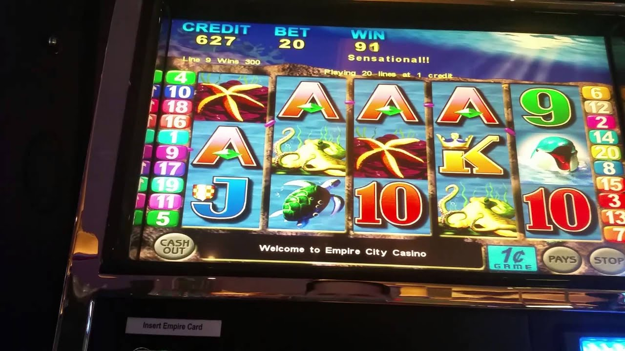 double dolphin slot machine