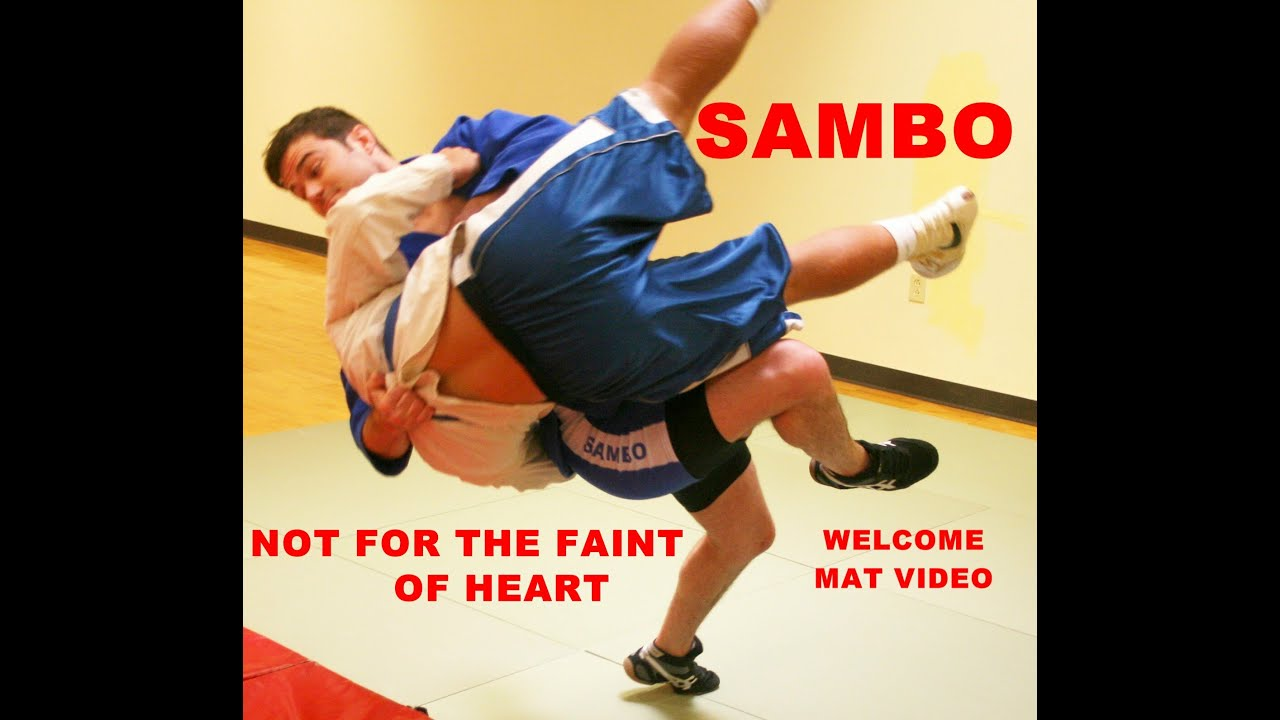What is Sambo Features of martial art 22
