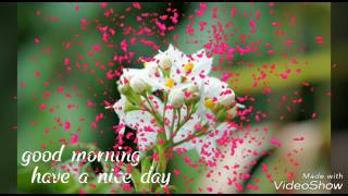 Good morning video song download
