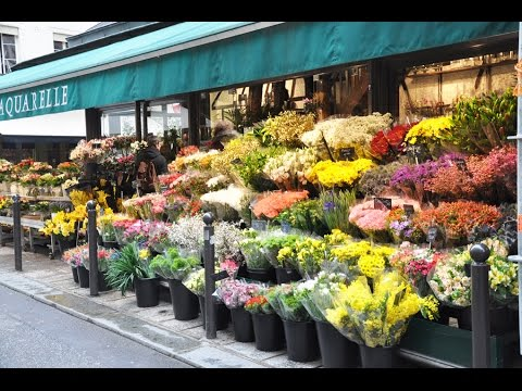 flower shops - flower shops near me - YouTube