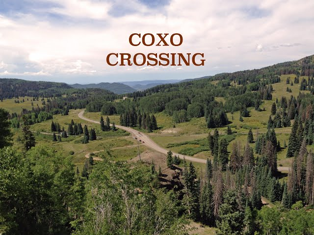 Coxo Crossing