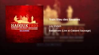 Train Bleu des Savanes