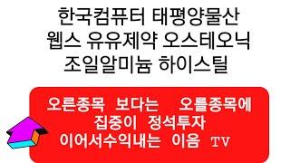 주식투자 한국컴퓨터 태평양물산 웹스 유유제약 오스테오닉…