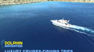 Dolphin Navigation Cruises
