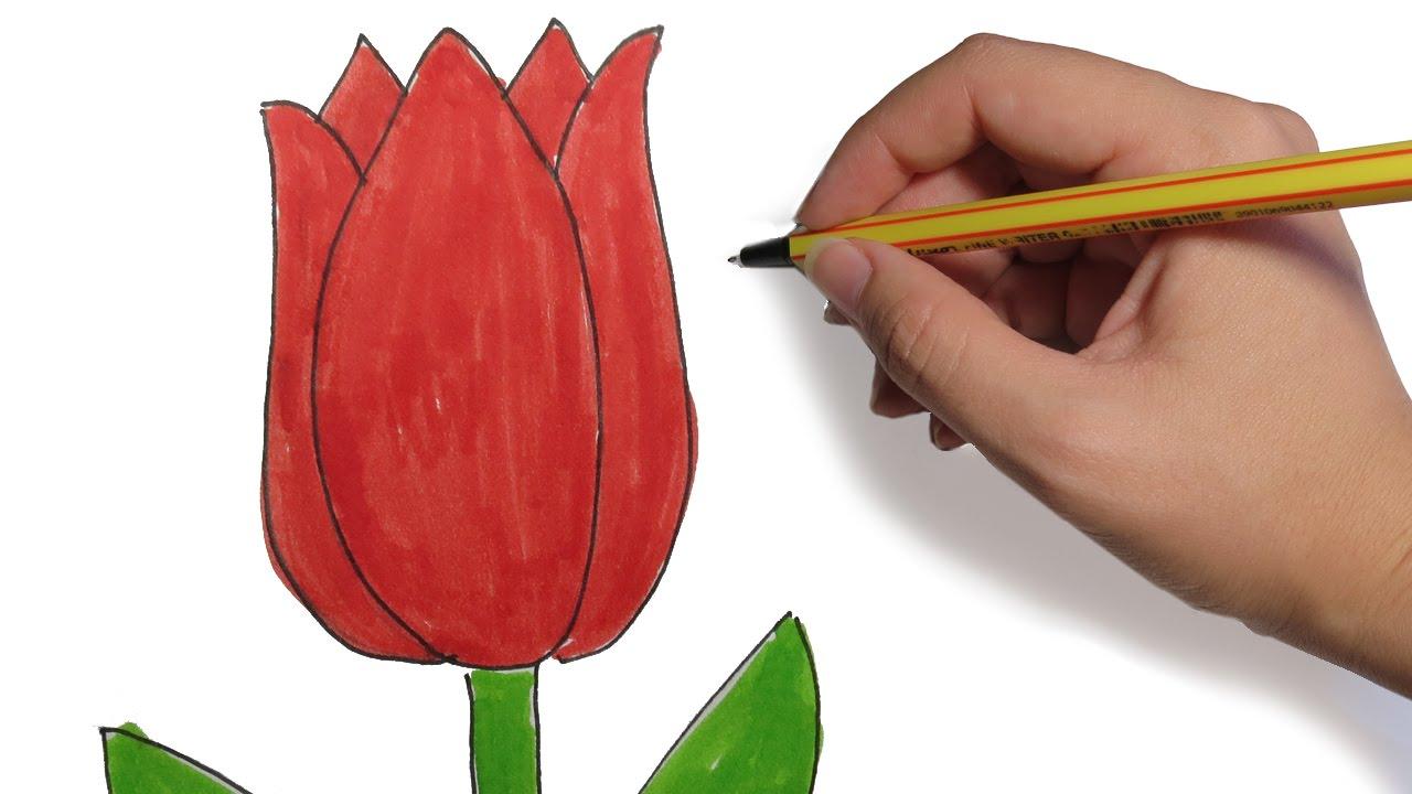 Como Dibujar Flores Tulipan Facil Paso A Paso Youtube