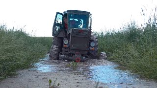 Трактор Т-40АМ удивляет на бездорожье!!! Все в шоке от его проходимости!!!
