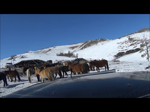 Driving during the Mongolian Winter in a Toyota Land Cruiser 80 (Tosontsengel, Zavkhan Province)