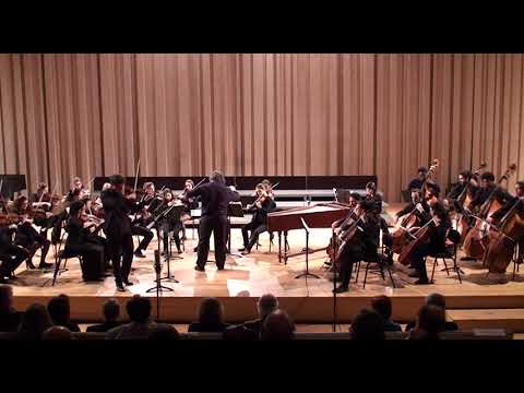 Bach Orchestral Suite n. 2 - with violin solo - Francisco Henriques Camerata Gareguin Aroutiounian