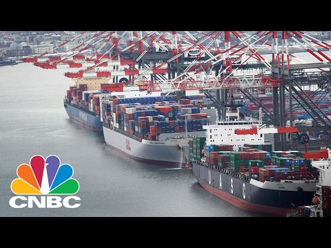 Border Tax Fight Is Economists Vs. Everybody Else | Squawk Box | CNBC