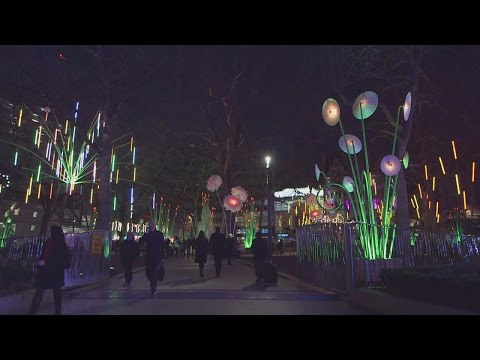 London lights up for Lumiere Festival of Light