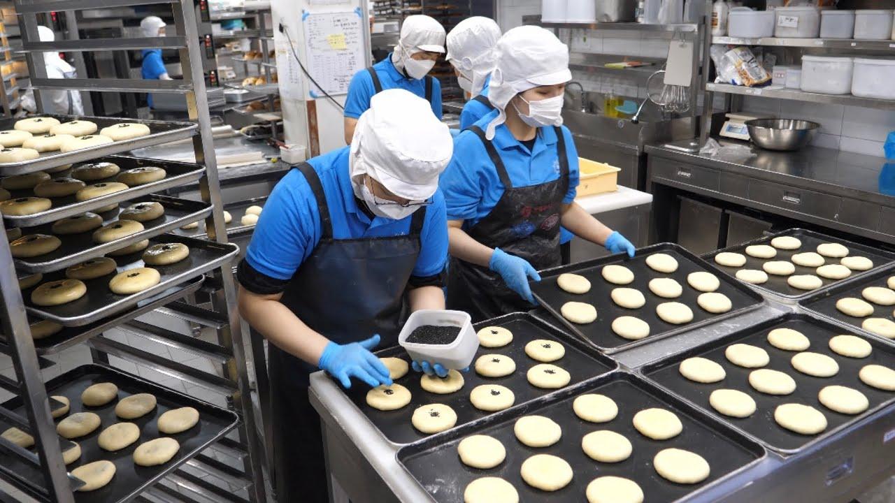 압도적인 판매량! 매일 직접 끓인 팥으로 만드는 호두 단팥빵 Making sweet red bean bread in bread factory - Korean street food