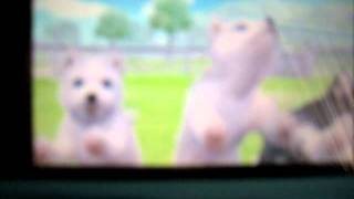 Nintendogs + cats: My dogs so far (Toy Poodle & new Friends)